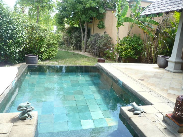 36 best images about pools on pinterest pool ideas for Private swimming pool