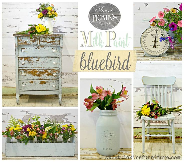 The Newest color from Sweet Pickins Milk Paint is Bluebird