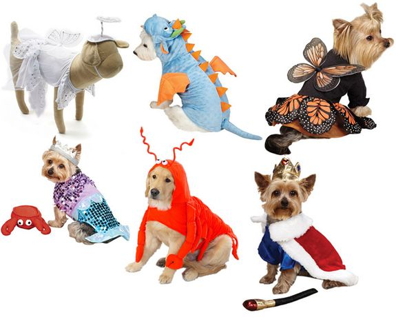 halloween pet sale costumes shirts accessories 60 off - Sale Halloween Costumes
