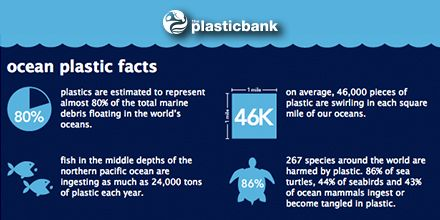 Ocean Plastic Facts. Please PIN to inform people of the Plastic ...