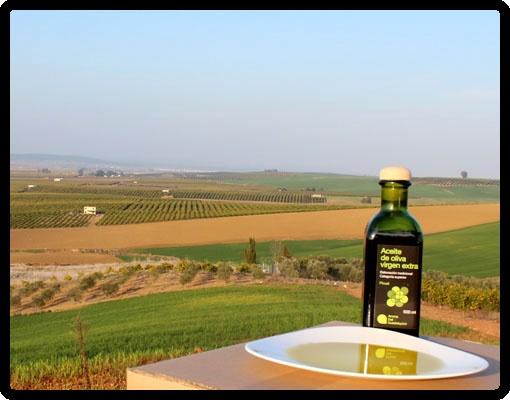 Aceite de Oliva Virgen Extra Aroma Del Guadalquivir producido a partir de una selección de nuestras aceitunas de la variedad Picual. La variedad Picual le aporta los matices de color oro viejo y lechoso y un sabor especialmente aromático y ligeramente frutado.