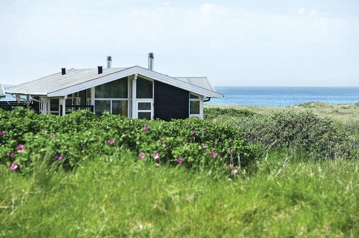 Vakantiepark Skallerup Klit is een mooi en ruim opgezet vakantiepark met een prachtige en rustige ligging in de duinen. Het park beschikt o.a. over een subtropisch zwemparadijs een wellnesscentrum, manege en een uitgebreid animatieprogramma voor kinderen. Kortom de ideale plek voor een ontspannen vakantie met het hele gezin! Het vakantiepark is heerlijk rustig gelegen, direct in de duinen en aan zee. Het centrum van Hjørring ligt op ca. 12 km. Officiële categorie ****