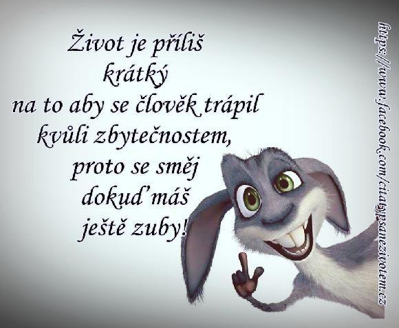 Život je příliš krátký na to, aby se člověk trápil kvůli zbytečnostem, proto se směj dokud máš ještě zuby!