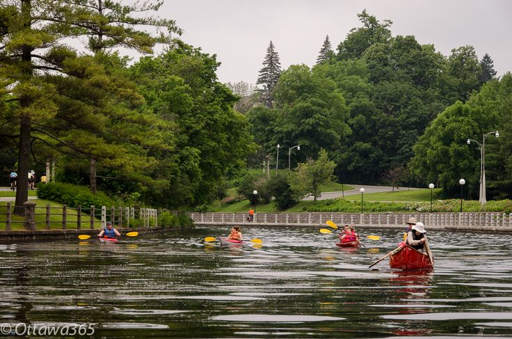 Ottawa seen 365 ways in 365 days: 353 - Kayaking as seen from a Boat in the Middle of the Rideau Canal