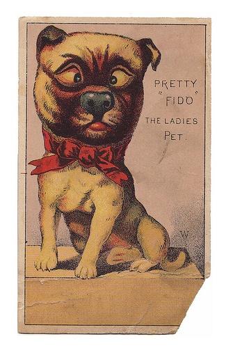 Pretty Fido The Ladies Pet Victorian Album Trade Scrap And Post