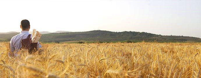 Les trois dimensions de la signification de Pâque - Ephraïm et Juda en Yeshoua (97-1)