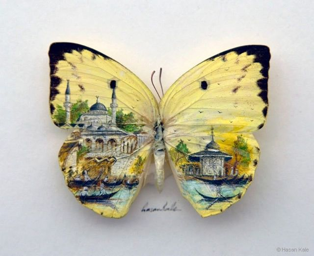 Tiny butterfly paintings of Istanbul by Hasan Kale.