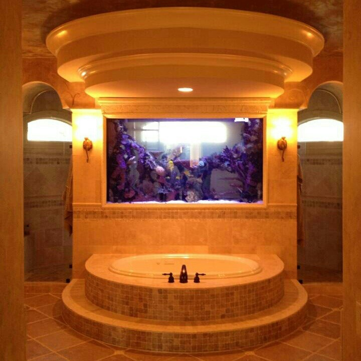Beautiful custom aquarium in a bathroom. The shower is located on the back side of the tank and the tank can be viewed from there also. There are no limits to what can be created!