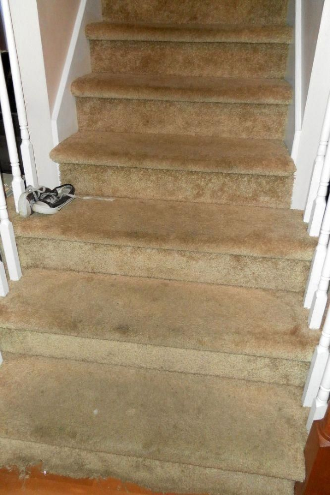 Best Carpet Runners For Stairs Uk Referral 8256709034 In 2020 640 x 480