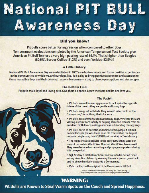 Pit Bull Awareness Flyer