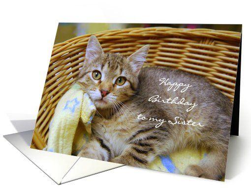 Happy Birthday Sister, Gray Tabby Kitten in a basket card  http://www.greetingcarduniverse.com/sister-birthday-cards/general/happy-birthday-sister-tabby-kitten-829468?gcu=42967840600