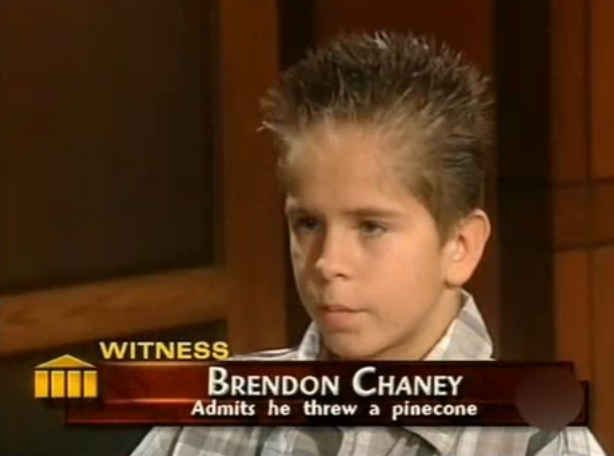 You will never be on Judge Judy for throwing a pinecone at someone.