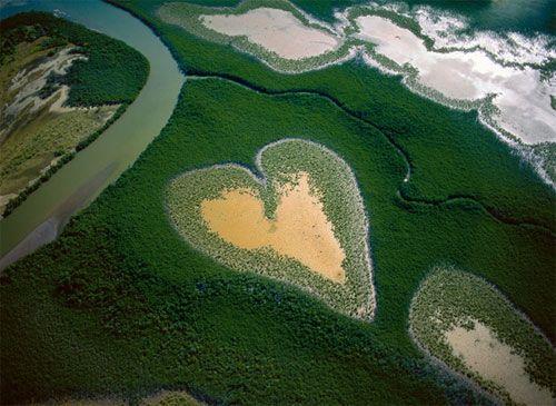 Quand l'eau dessine des œuvres d'art Voir le diaporama : http://www.consoglobe.com/diaporama-eau-dessine-oeuvres-art-cg
