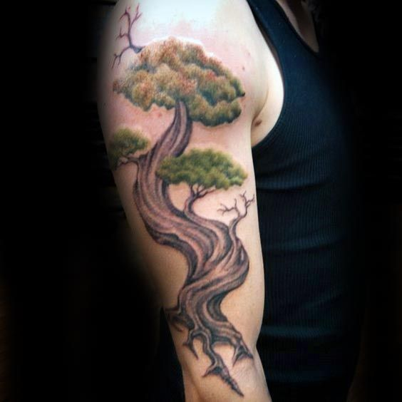 11 best japanese bonsai tree tattoo images on pinterest bonsai bonsai trees and bonsai tree. Black Bedroom Furniture Sets. Home Design Ideas