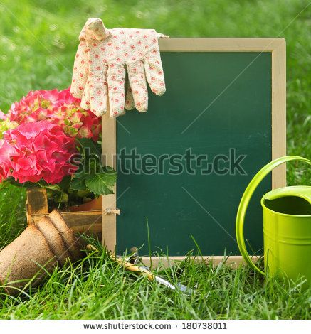 Beautiful spring flowers and blackboard blank on the green grass. Gathering - stock photo