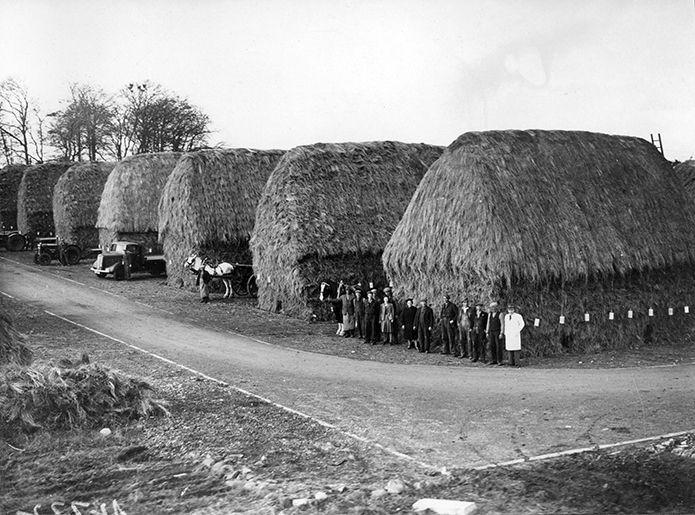 Northern Irish Linen | Envoy of Belfast