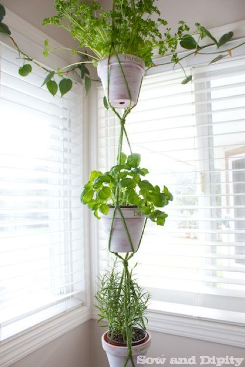 Macrame Plant Hanger   This DIY Macrame Hanger Features Three Tiers For  Hanging Herbs In Your