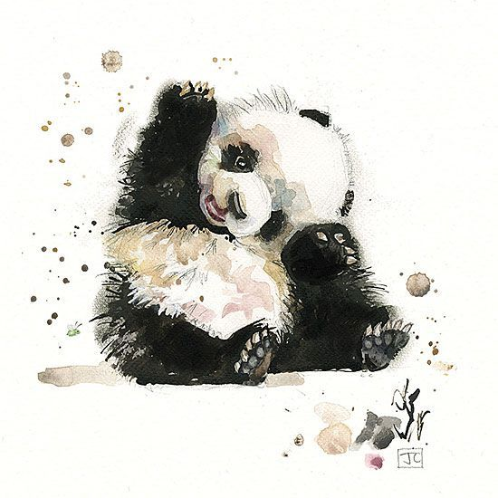 Baby Panda Design By Jane Crowther Bug Art Greeting