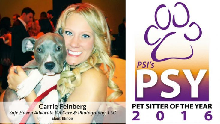 Pet Sitters International (PSI) has named Carrie Feinberg, owner of Safe Haven Advocate Pet Care & Photography, LLCin Elgin, Illinois, the 2016 Pet Sitter of the Year.