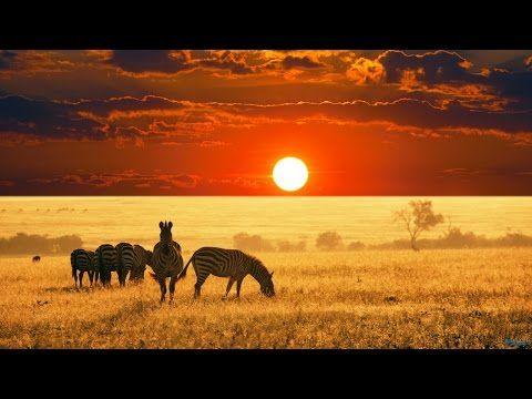 Afbeeldingsresultaat voor african landscape