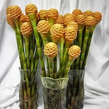 Beehive Tropical Ginger Flowers.