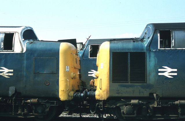Three Deltics in the works yard at Doncaster on 2nd August 1981. On the left, 55012 'Crepello' withdrawn on 18th May 1981. On the right 55011 'The Royal Northumberland Fusiliers' withdrawn on 8th October 1981. At the rear, 55005 'The Prince of Wales Own Regiment of Yorkshire' withdrawn on 8th February 1981. (cabsaab900)