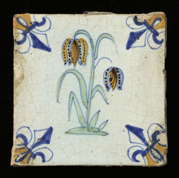 ¤ dutch tile : fritillaria tile. 1620 - 1650 Maker:Verswaen, Willem Jansz. (Gouda) Techniek: Tinglazuur