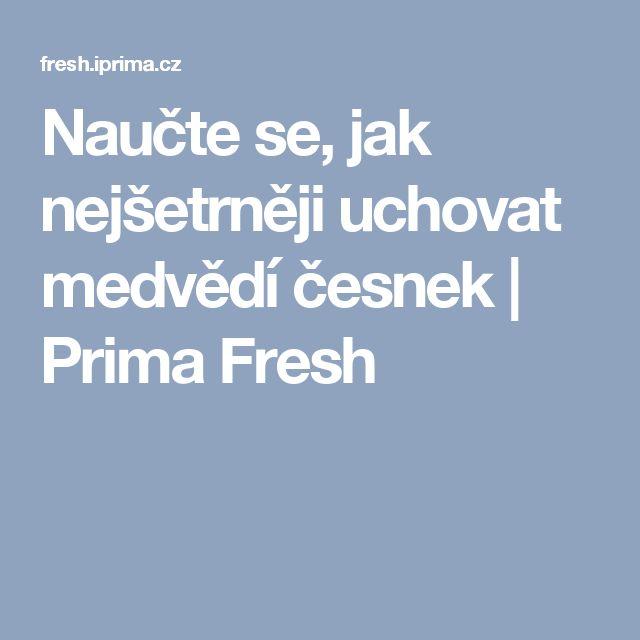 Naučte se, jak nejšetrněji uchovat medvědí česnek  | Prima Fresh