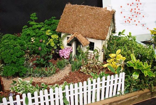Mini gardens for skillful enthusiasts  idea 3