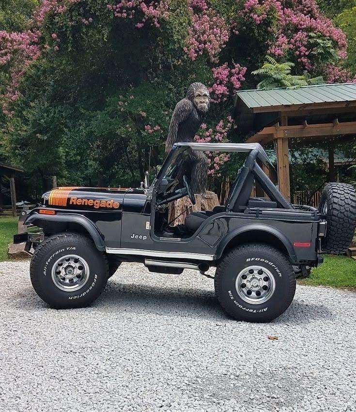 Pin On Jeep Cj5 Golden Eagle Renegade Laredo