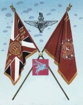 2nd Bn Parachute Regiment colours