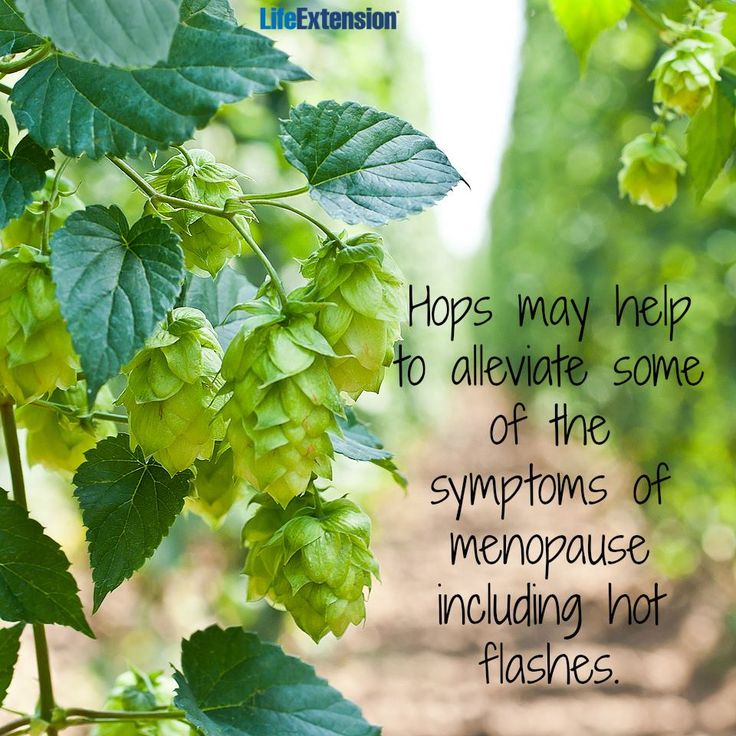 "We're so ""hoppy"" to report this! New hope for managing menopausal symptoms naturally! ;) #hops #menopause #health #hormones #lifeextension"