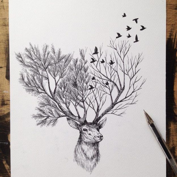 Pen & Ink Depictions of Trees Sprouting into Animals by Alfred Basha |  Drawings, Pen illustration, Animal illustration