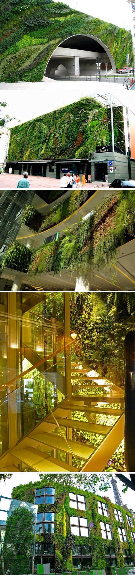 234 best Planter Walls and Green Roofs images on Pinterest | Green ...