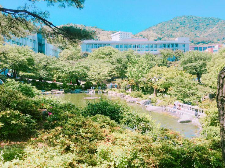 #경남대학교 사진1 오늘 날씨꿀~