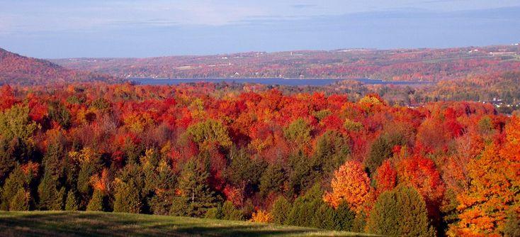 Turismo del foliage, le magie cromatiche dell'autunno #consigli di #viaggio