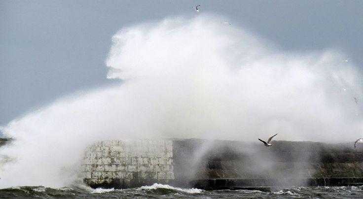 österlen storm - Sök på Google