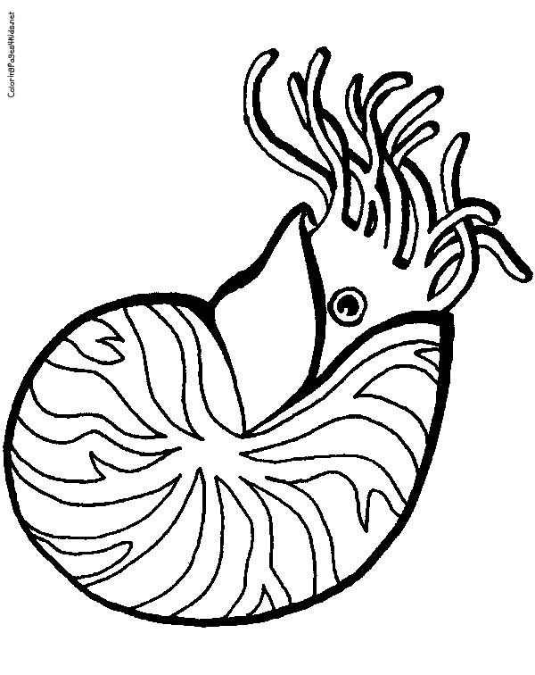 Free Coloring Pages Of L Is For Lobster