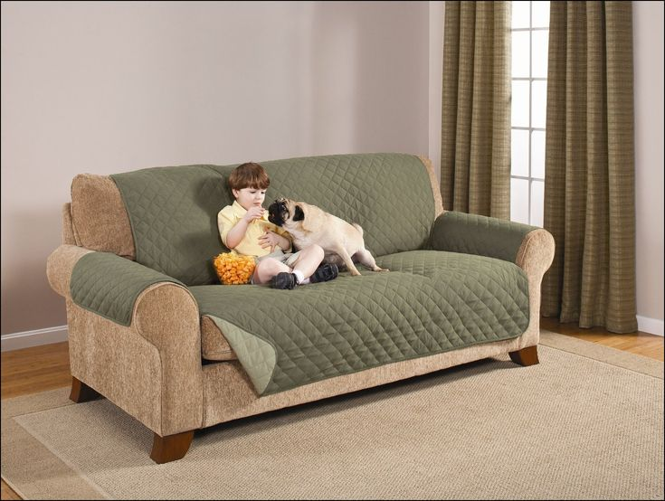 Best Pet sofa Cover