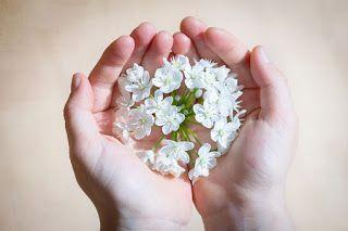 Il filo di Erica: Ultimi fiori