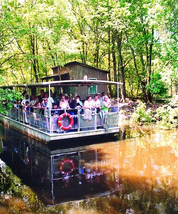 Jean Lafitte Swamp Tours #NOLA #JeffersonParish #Fun http://families.visitjeffersonparish.com