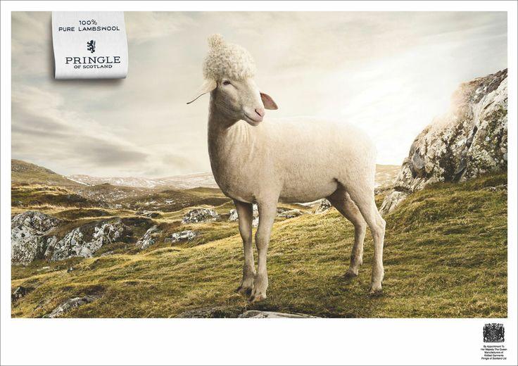pringle of scotland advert