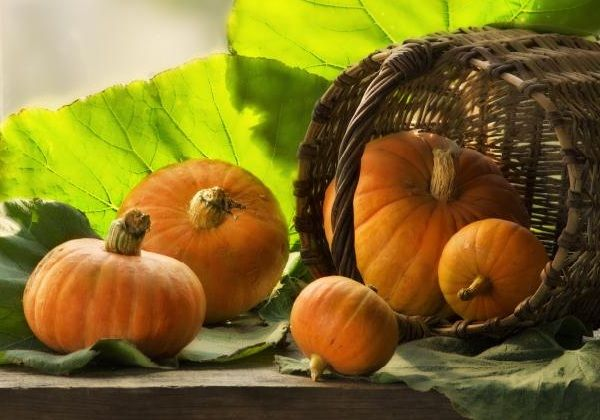 Самые полезные фрукты овощи ягоды зимой - Тыква