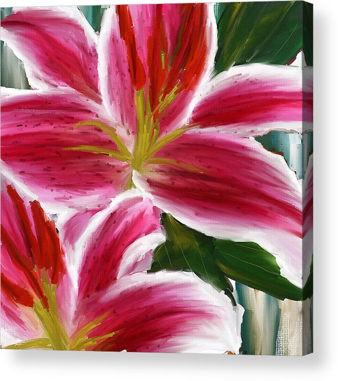 Asiatic Lily Acrylic Print Featuring The Painting Paintings Pink