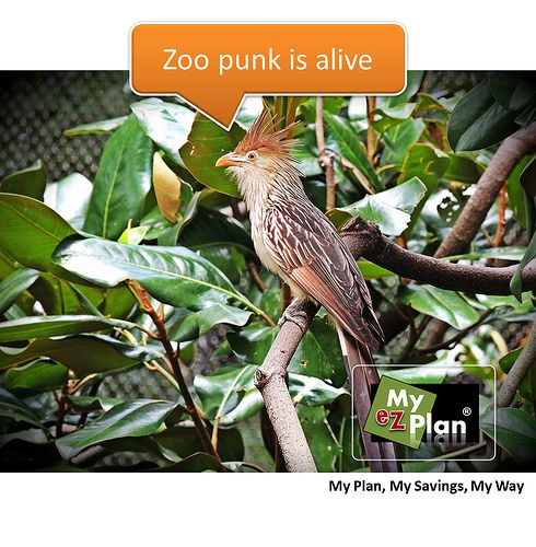 """""""Yippee ! Nutty Animal 