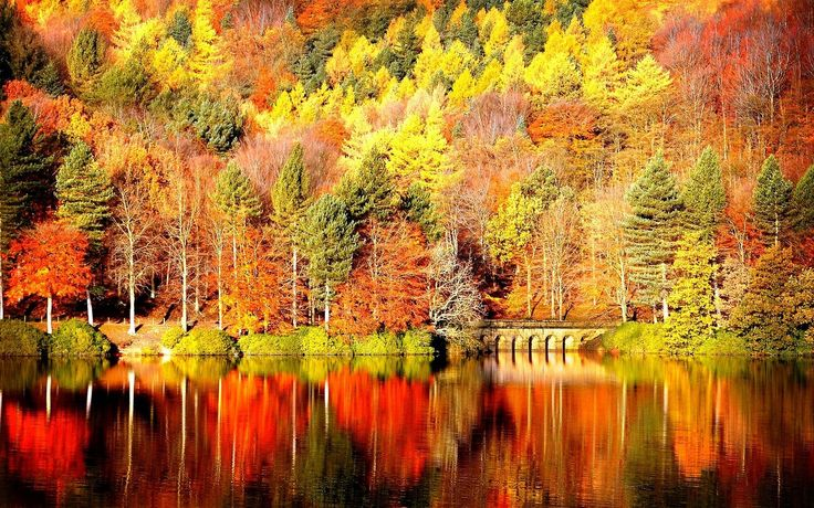 Free Fall Wallpaper Pictures Lake photos of Free Fall Wallpaper ...