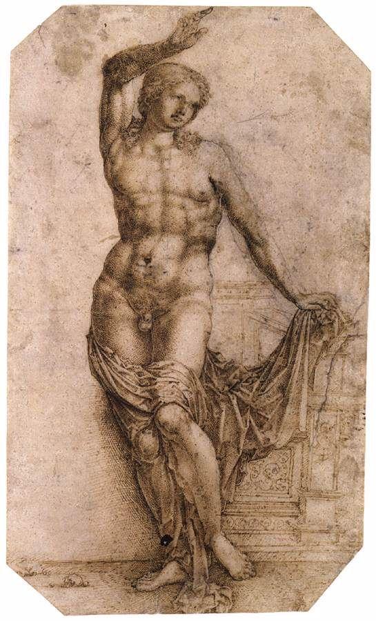Απόλλων κιθαρωδός (1509)