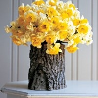 drill a hole in a log, add a glass jar and you have a beautiful natural vase. LOVE!