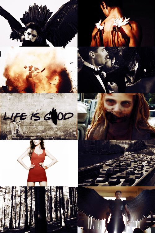 """Who Will Guard Against the Guardians? — faefever: ↳2014 Books """"I wonder which will..."""