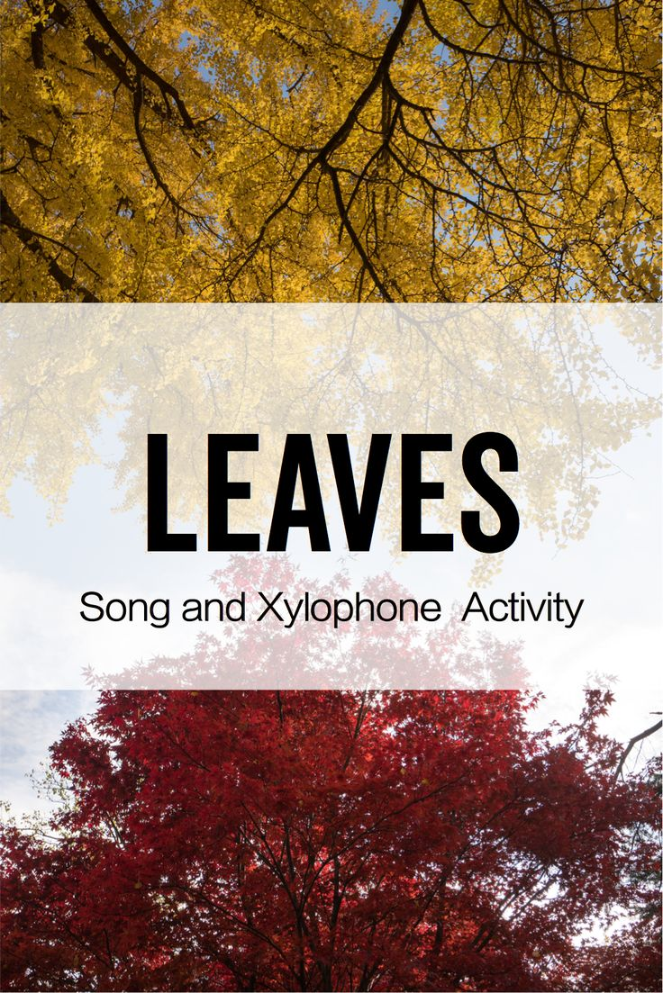 "A great resource to accompany Arvida Steen's ""Leaves"". Students participate in movement activities as they learn to differentiate high and low pitches using their bodies, their voices, and xylophones!"